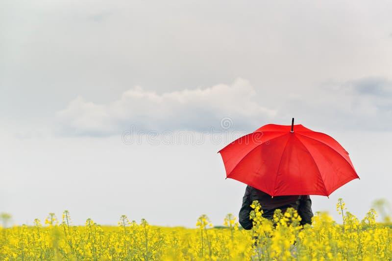 Person med rött paraplyanseende i oljefrörapsfröt Agricultura royaltyfri foto