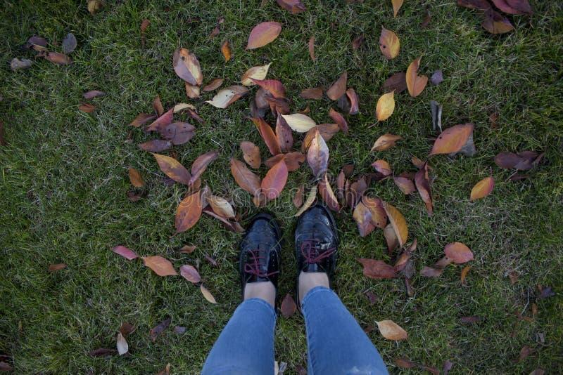 Person in patentgeschützten schwarzen Low-Top-Schuhen über grünem Gras stockbilder