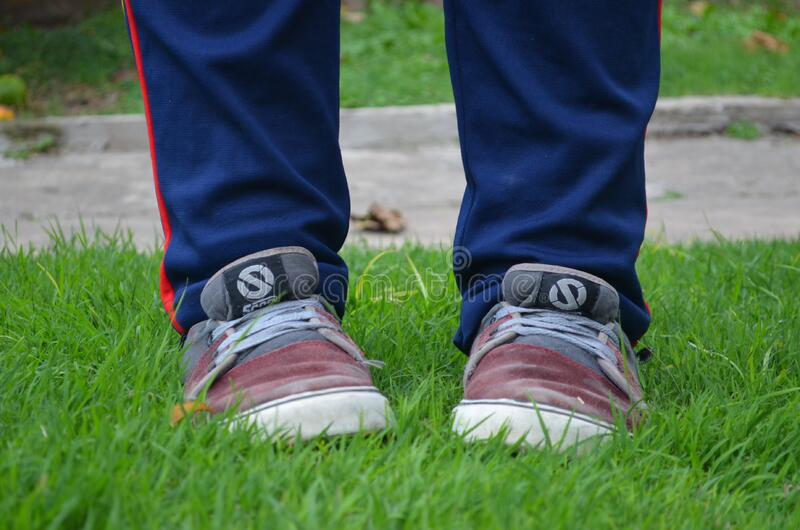 Person in Red Grey Sneakers on Green Grass stock image