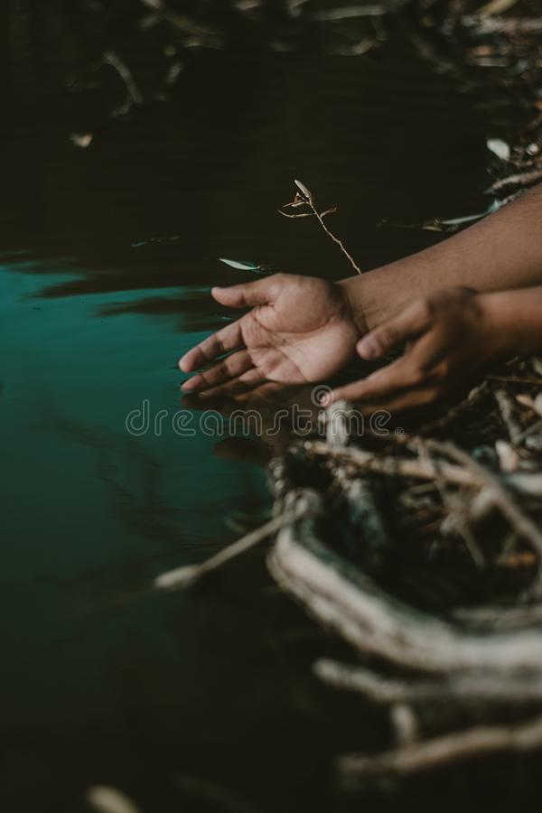 Person's Hands on Body of Water royalty free stock image
