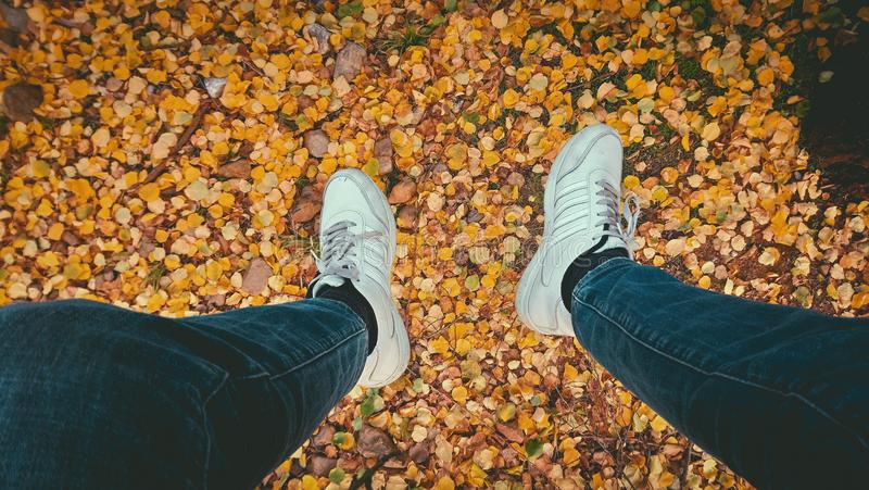 Person's Wearing Blue Jeans and Pair of White Sneakers royalty free stock photography