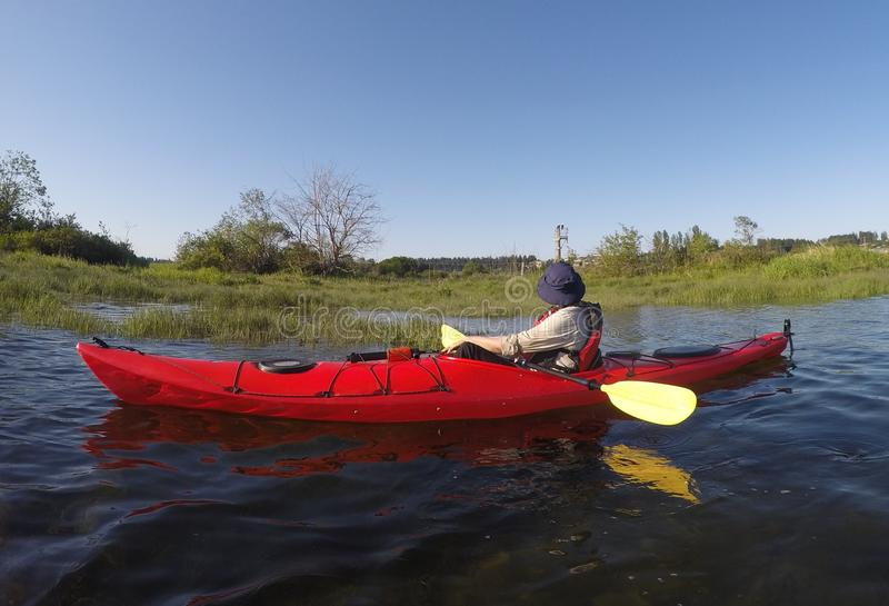 Person sitting in a canoe at the estuary looking towards two bald Eagles stock images