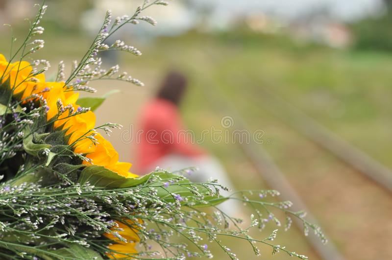 Person Sitting On Green Grass Near Yellow Petaled Flower Free Public Domain Cc0 Image