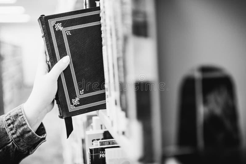 Person som drar en bok från en arkivhylla royaltyfri fotografi