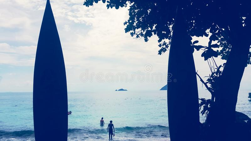 Person Standing in Front of Body of Water Near Tree royalty free stock photos