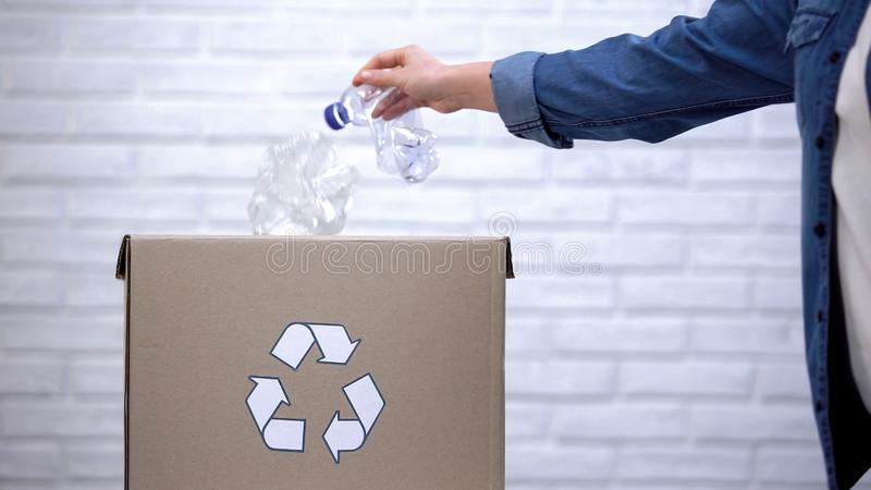 Person throwing plastic bottles into trash bin, sorting non-degradable waste. Stock photo stock photos