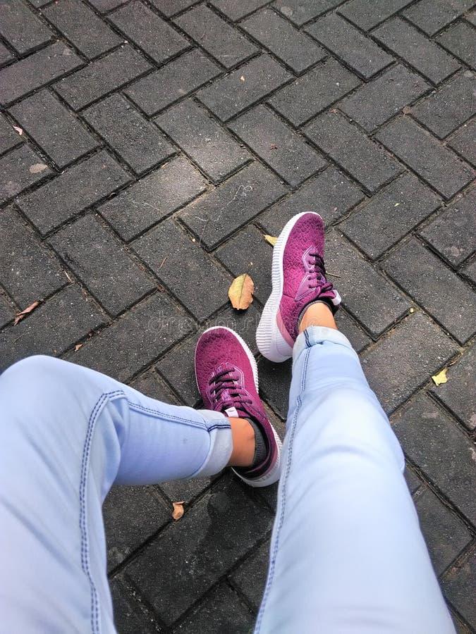 Person trägt violette Nieder-Top-Sneakers lizenzfreie stockfotografie