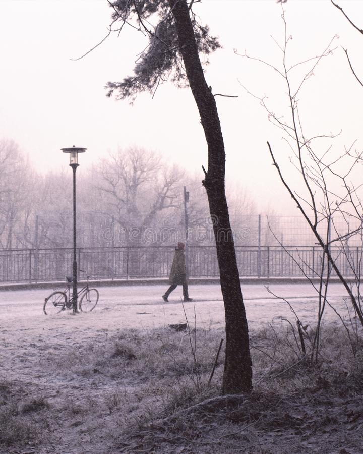 Person walking in snowy, urban winter landscape. Person walking in urban winter landscape, snow falling down. A bike against a lamppost royalty free stock image