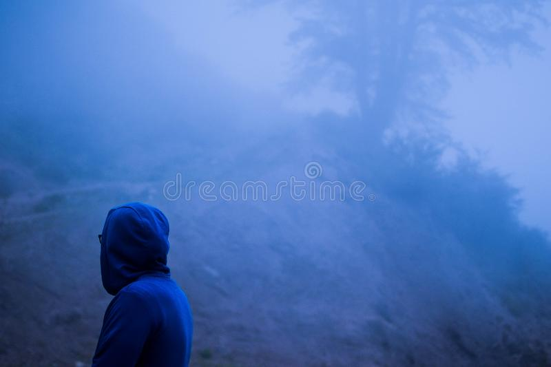 Person wearing a blue hoodie standing in a forest covered in fog stock photography