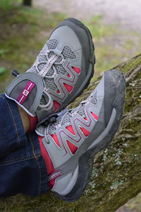 Person Wearing Gray and Pink Skechers Running Shoes royalty free stock image