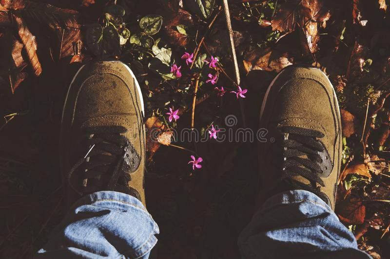 Person Wearing Pair Of Brown Suede Sneakers royalty free stock photography