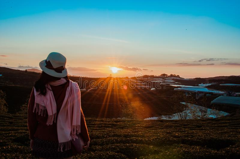 Person Wearing White Fedora Hat and Pink Scarf during Golden Hour stock image