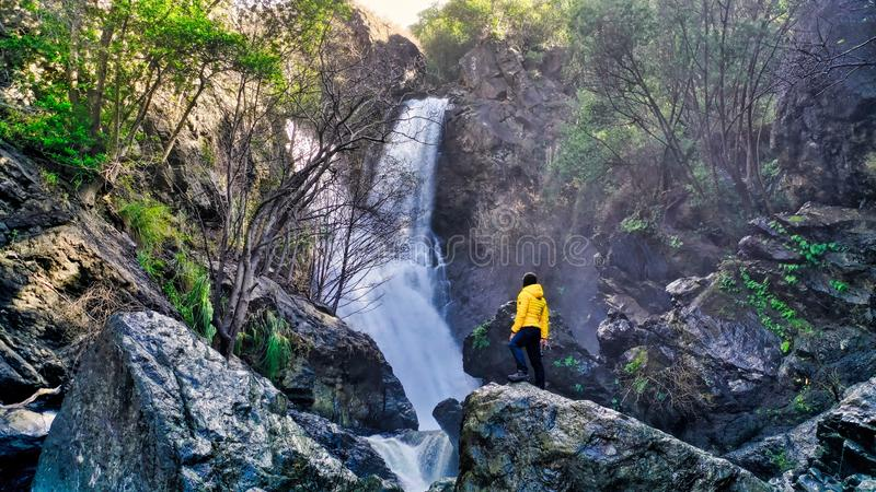 Person in a yellow jacket standing on rocks near a beautiful waterfall in a forest stock photo