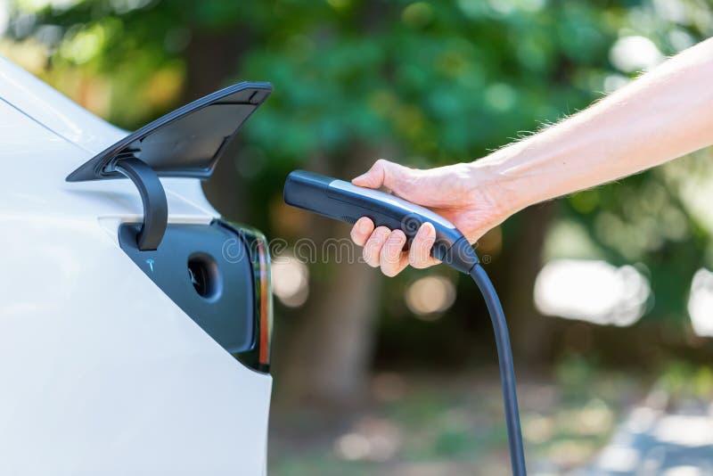 Persona che fa pagare tutto il modello elettrico 3 in Raleigh, NC di Tesla immagine stock libera da diritti
