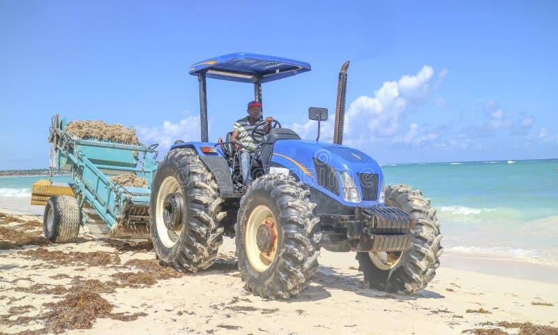 Persona che guida un trattore e che pulisce la spiaggia fotografia stock libera da diritti