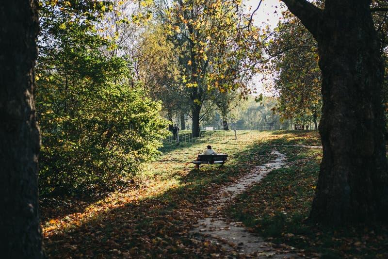 Persona che si siede su un banco, rilassantesi dallo stagno in Hampstead Hea immagini stock