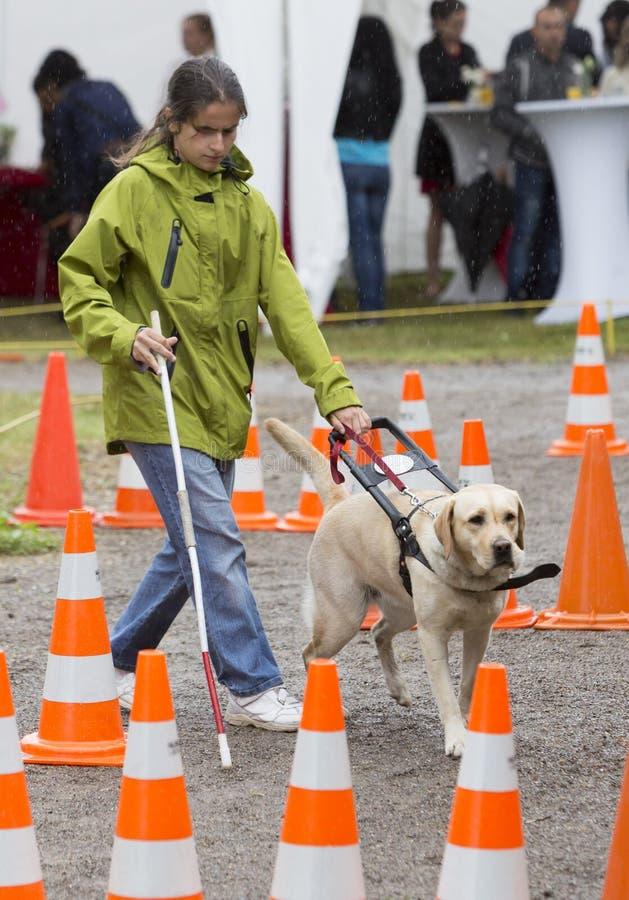 Persona ciega con su perro guía imagen de archivo