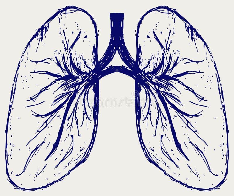 Persona de los pulmones ilustración del vector