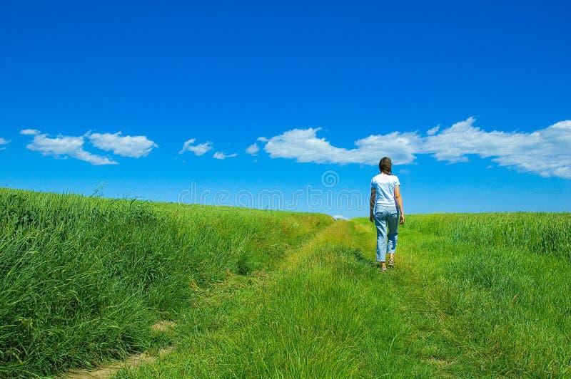 Persona en el campo verde 2 imagen de archivo