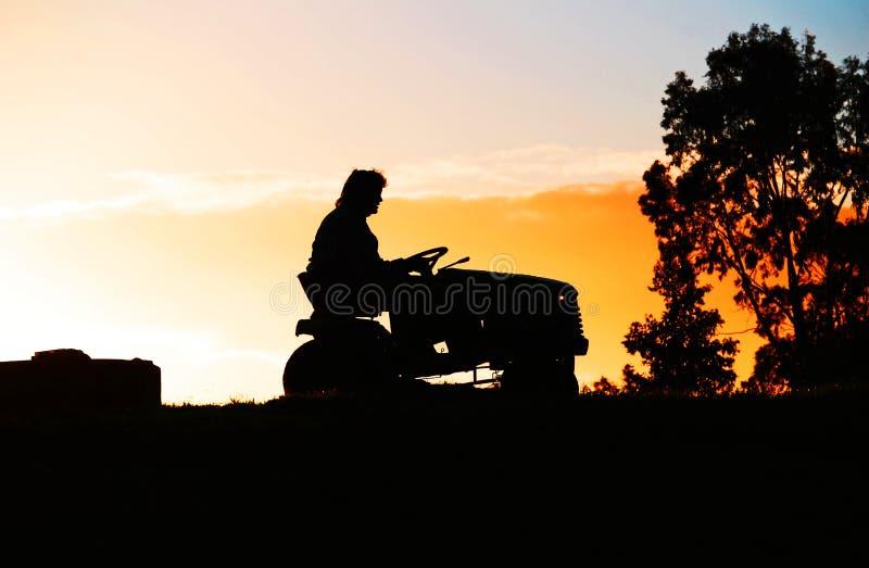 Persona en un paseo en el cortacéspedes de césped en granja en el ocaso imágenes de archivo libres de regalías