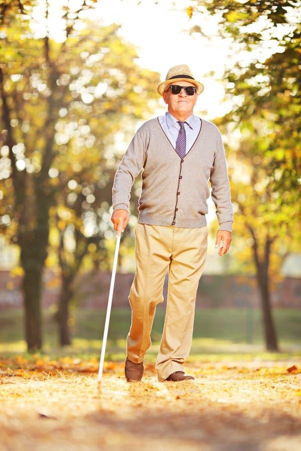 Persona madura ciega que sostiene un palillo y que camina en un parque foto de archivo