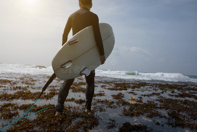 Persona que practica surf de la mujer con caminar de la tabla hawaiana imágenes de archivo libres de regalías