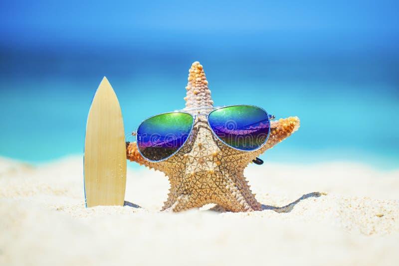 Persona que practica surf de las estrellas de mar en la playa imágenes de archivo libres de regalías