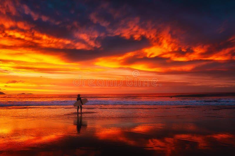 Persona que practica surf en la puesta del sol de la playa fotografía de archivo