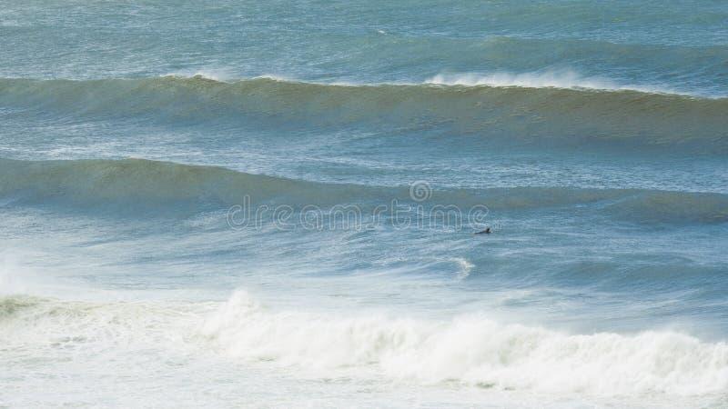 Persona que practica surf solitaria en el mar imágenes de archivo libres de regalías
