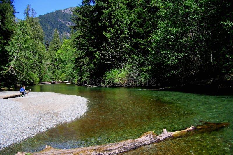 Persona que se sienta en Gravelbank en Cameron River, parque provincial de Macmillan, isla de Vancouver fotos de archivo