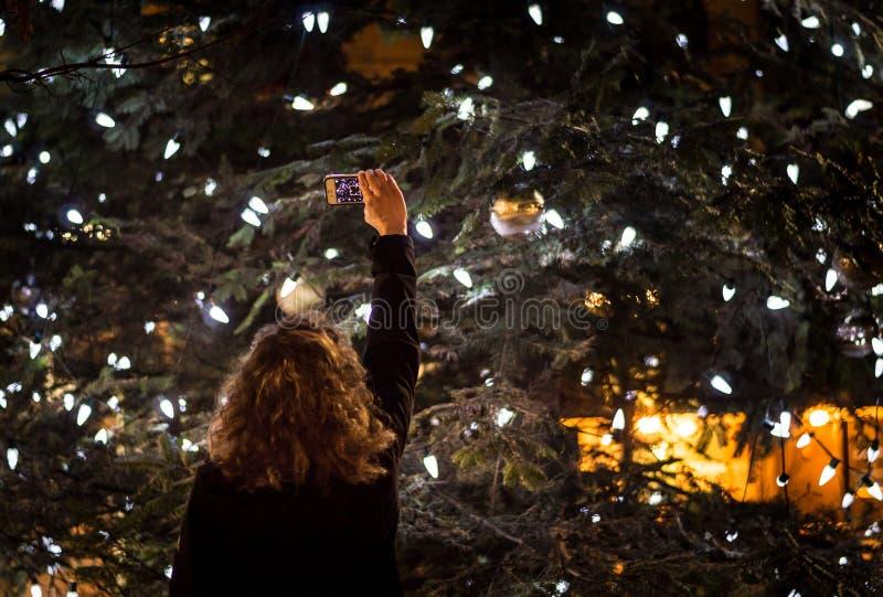 Persona que toma una foto de un árbol de navidad al aire libre grande en la noche imagen de archivo