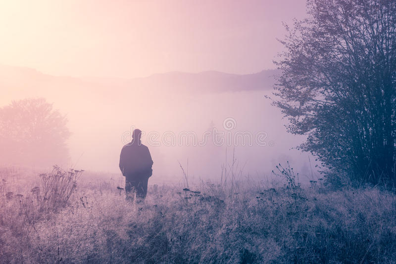 Persona sola en la niebla de la mañana. fotos de archivo libres de regalías