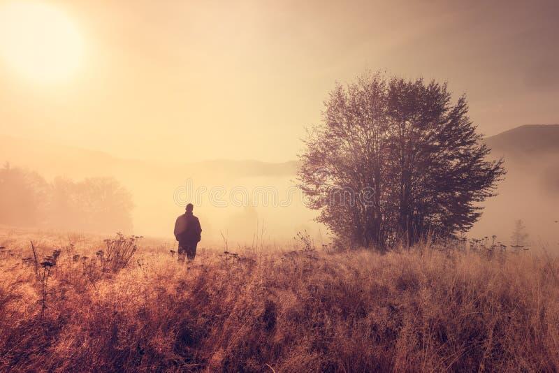 Persona sola en la niebla de la mañana. imagen de archivo libre de regalías