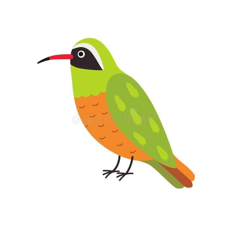 Personagem de banda desenhada do colibri de Xantus ilustração stock