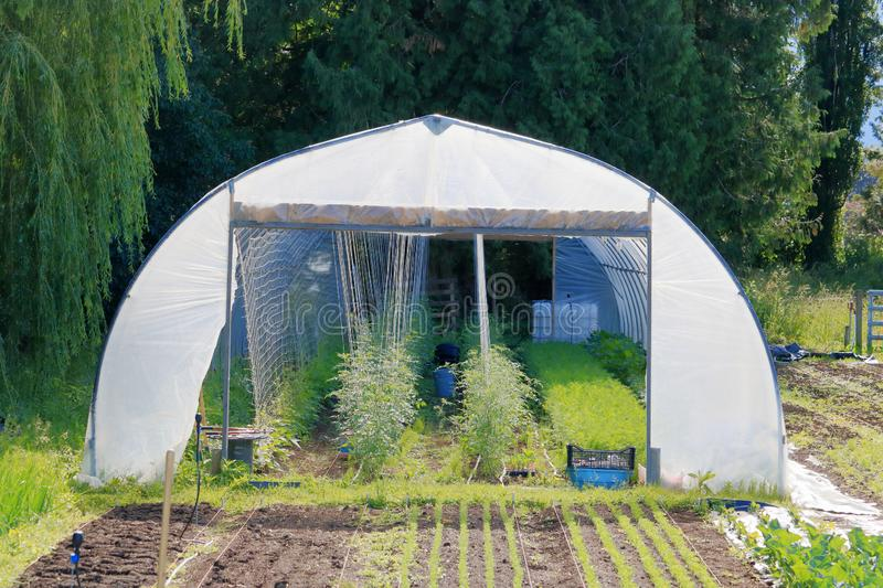 Personal Home Garden Greenhouse. Front view of a small home garden greenhouse where gardeners can start their plants early before planting in the garden royalty free stock photography
