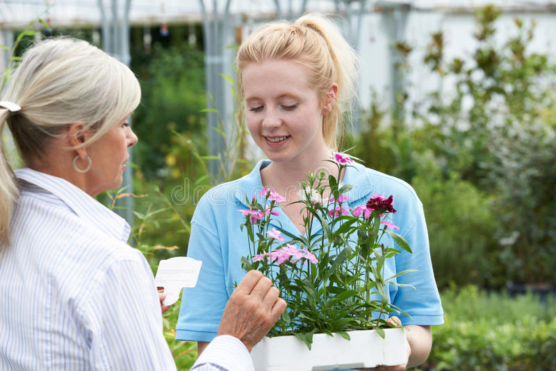 Personal que da consejo de la planta al cliente femenino en el centro de jardinería imagenes de archivo