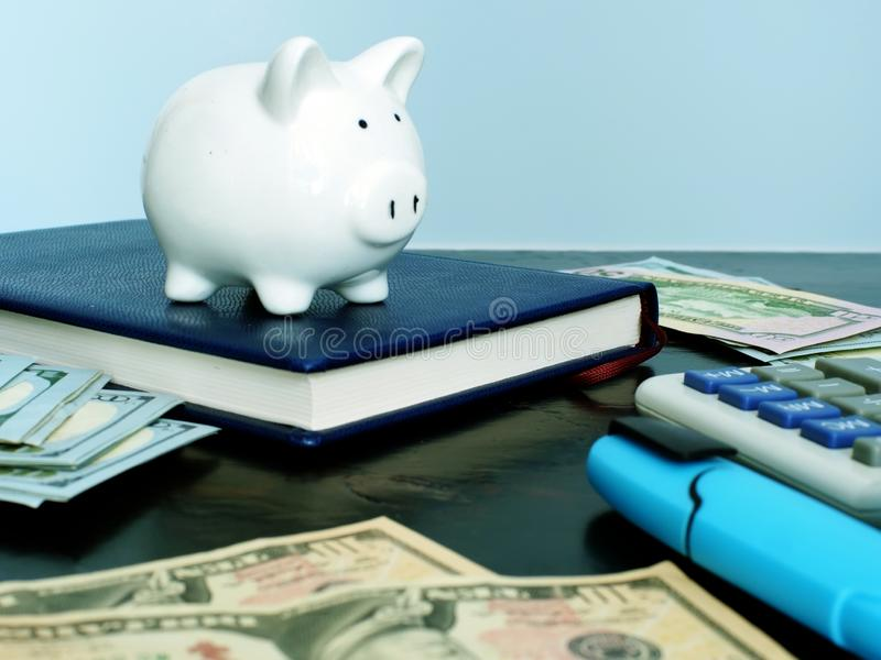 Personal savings and budget. Piggy bank and money. Personal savings and budget. Piggy bank and cash stock image