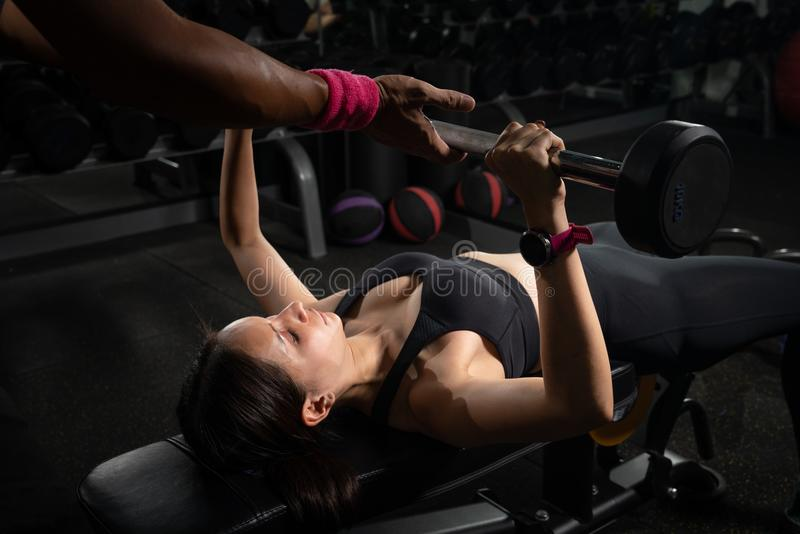 Personal trainer helping woman bench press in gym, Training with barbell stock image