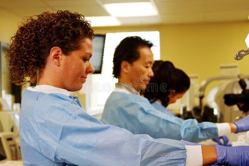 Personale del laboratorio che funziona nel laboratorio dell'ospedale fotografia stock libera da diritti
