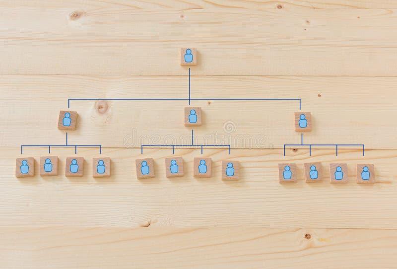 Personalresursledning och företags hierarki royaltyfria foton