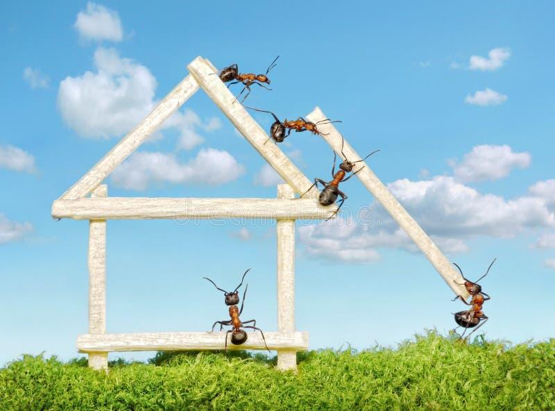 Personas de las hormigas que construyen la casa de madera foto de archivo libre de regalías