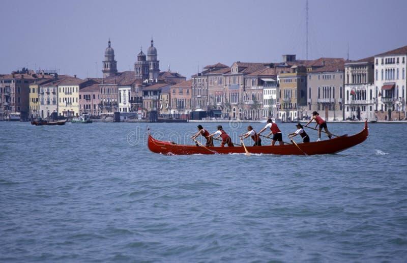 Personas del Rowing, Venecia. foto de archivo