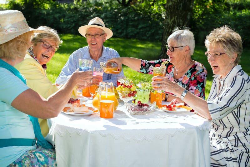 Personas mayores felices que se sientan alrededor de la tabla que merienda en el campo imágenes de archivo libres de regalías