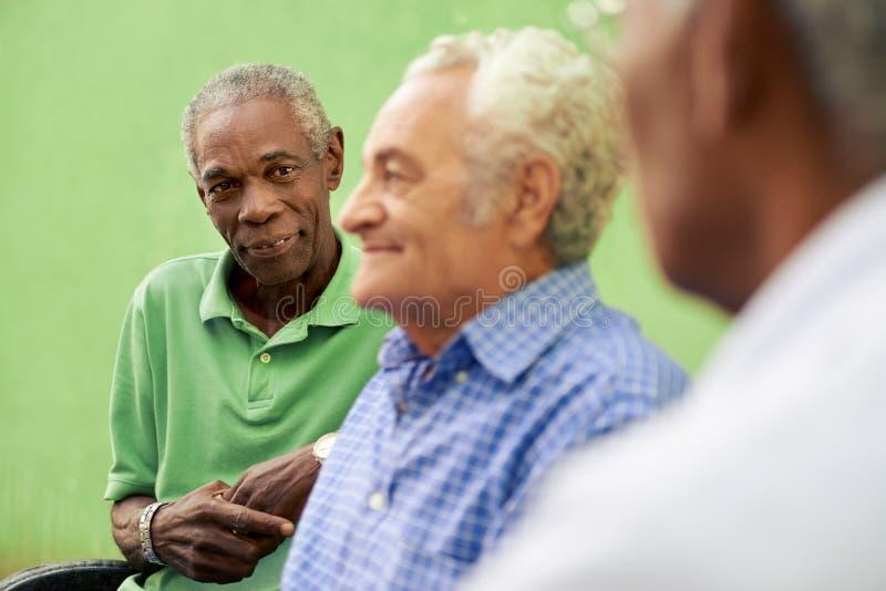 Grupo de viejos hombres negros y caucásicos que hablan en parque fotografía de archivo libre de regalías