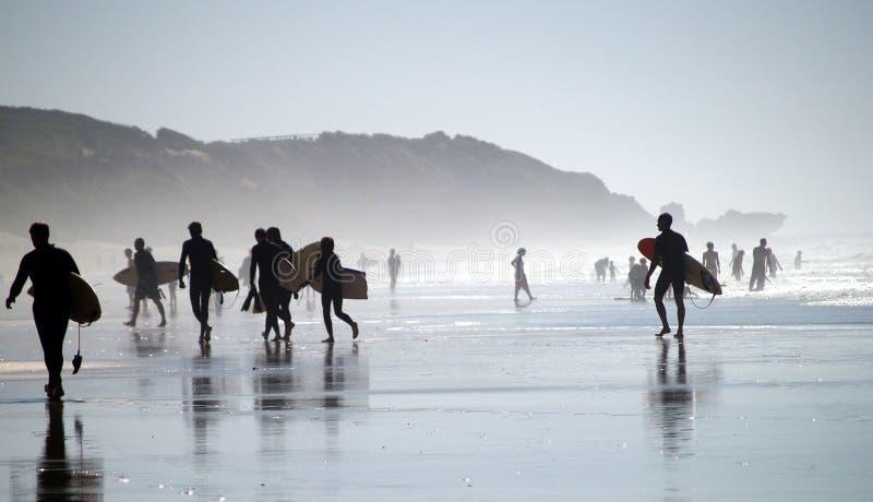 Personas que practica surf imagen de archivo