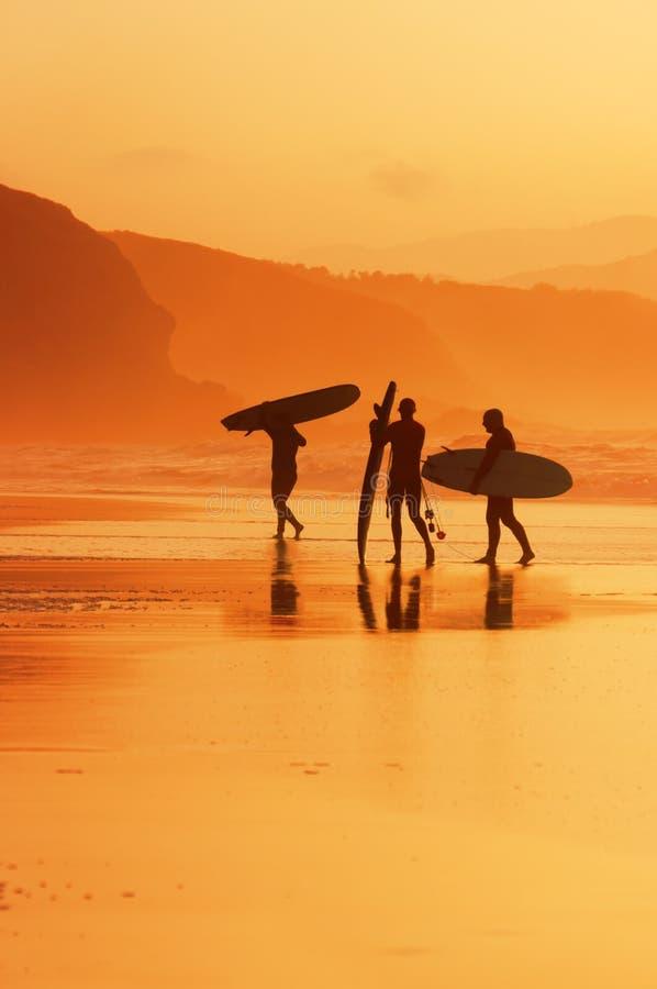 Personas que practica surf en la orilla en la puesta del sol foto de archivo libre de regalías