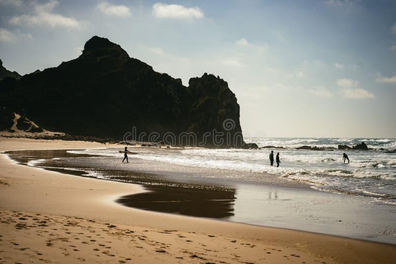 Personas que practica surf y nadadores en la playa imagen de archivo