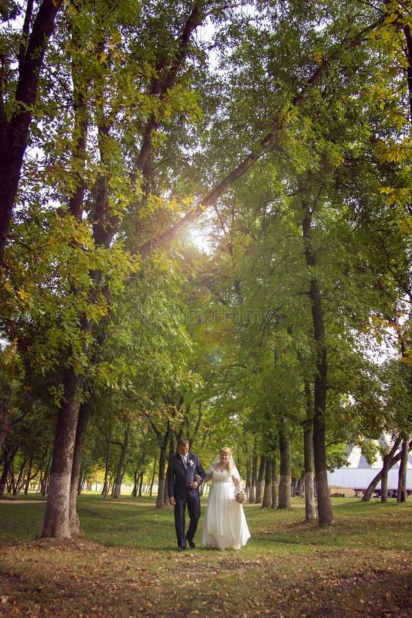 Persone appena sposate felici nel parco di estate immagini stock