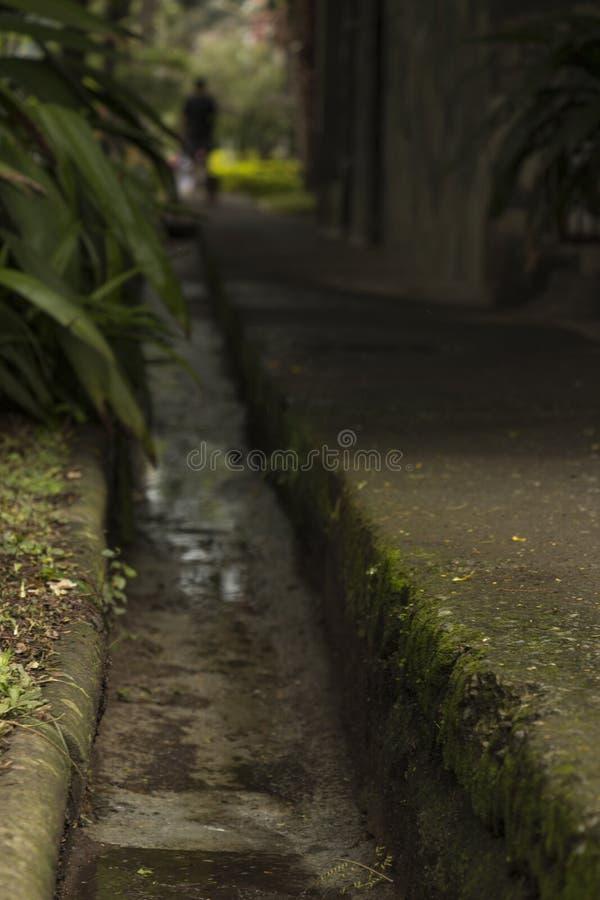 Personen och husdjuret som går in mot en tunnel på en våt och grön trottoar, symboliserar död och liv royaltyfria bilder