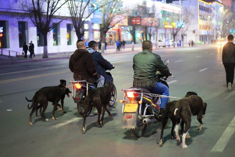Personenvervoer een motorfiets stock afbeelding